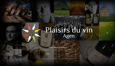Site internet de Plaisirs du Vin