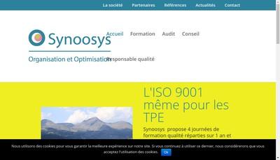 Site internet de Synoosys
