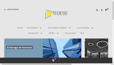 Site internet de Tedess