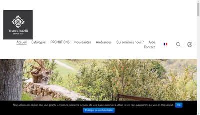 Site internet de Poupees Yolande