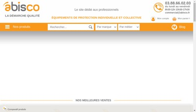 Site internet de Abisco
