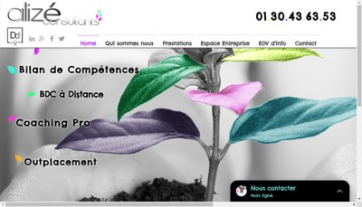 Site internet de Alize Consultants