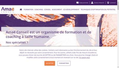 Site internet de Amae Conseil