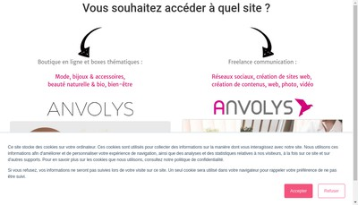 Site internet de Anvolys Informatique