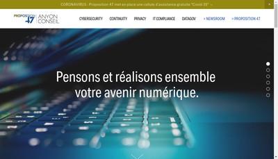 Site internet de Anyon Conseil