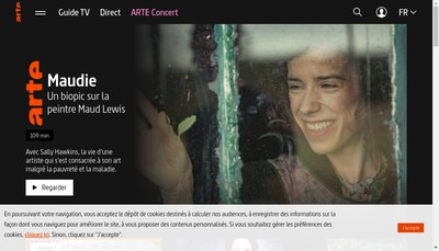Site internet de Arte France Developpement