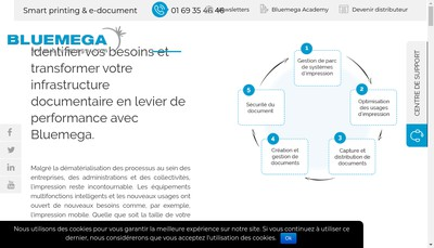 Site internet de Bluemega Document & Print Services