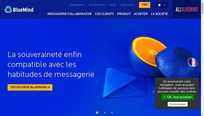 Site internet de Blue Mind