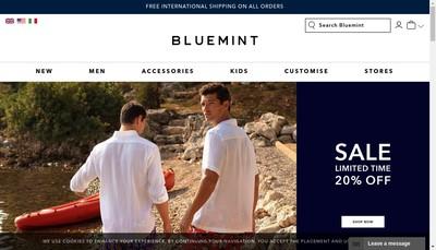 Site internet de Bluemint