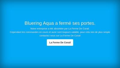 Site internet de Blue Ring Aqua