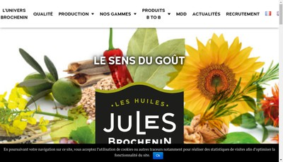 Site internet de Jules Brochenin