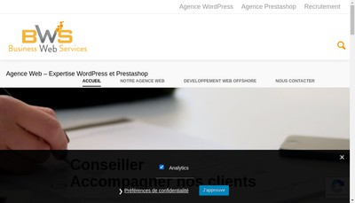 Site internet de Business Web Services