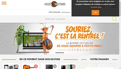 Site internet de Cash Express