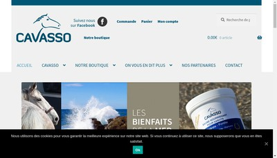 Site internet de Cavasso
