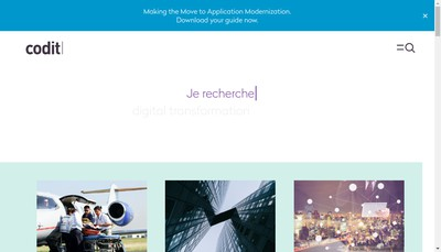 Site internet de Codit France