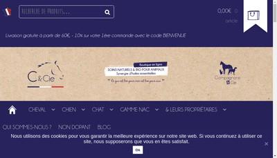 Site internet de C et Cie
