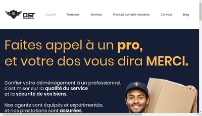 Site internet de Dst International