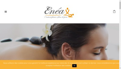 Site internet de Enea