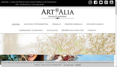 Site internet de Art Alia