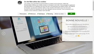Site internet de Gammeo
