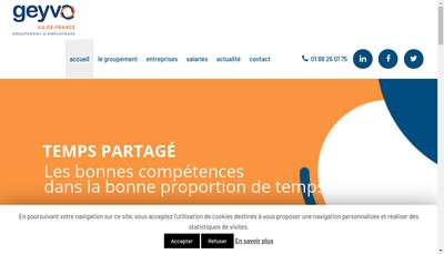 Site internet de Geyvo Ile de France