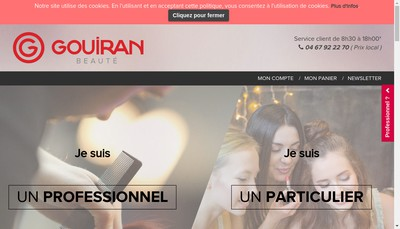 Site internet de Groupe Gouiran
