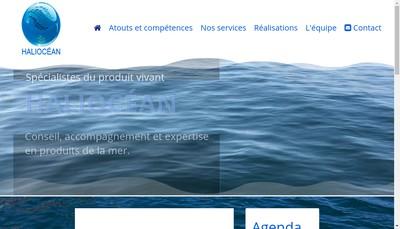 Site internet de Haliocean