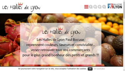 Site internet de Dubernet Lyon Gastronomie
