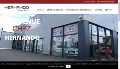 Site internet de Hernando Automobiles