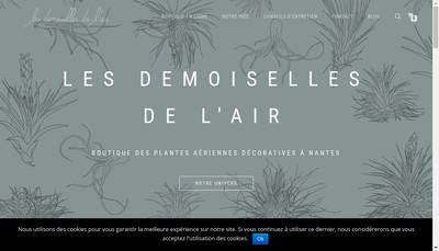 Site internet de Les Demoiselles de l'Air