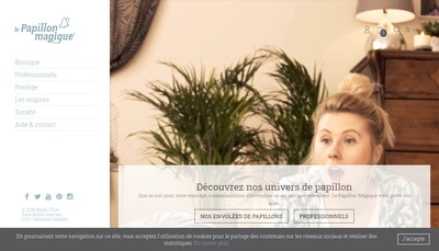 Site internet de Magic Flyer International