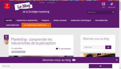 Site internet de Synthese Decision Strategie
