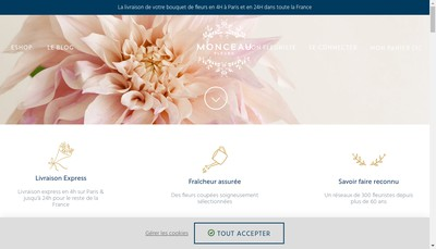 Site internet de Monceau Fleurs Expansion