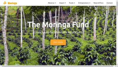 Site internet de Moringa Partnership