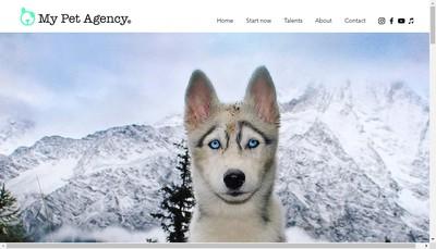 Site internet de My Pet Agency