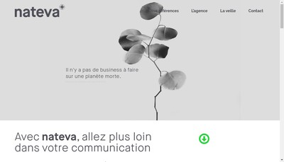 Site internet de Nateva Communication