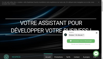 Site internet de Nesprod