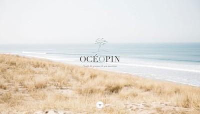 Site internet de Oceopin