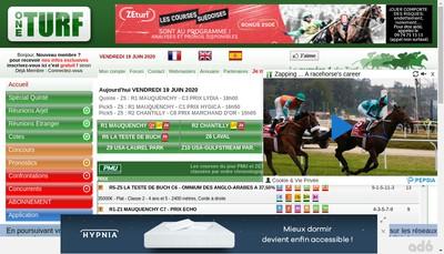 Site internet de Oneturf