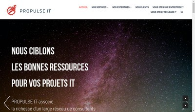 Site internet de PROPULSE IT
