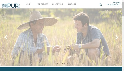 Site internet de Pur Projet