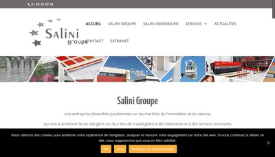 Site internet de Salini Groupe