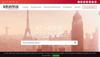 Site internet de Skema Alumini