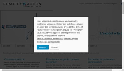 Site internet de Strategy & Action International