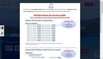 Site internet de TLV TVM