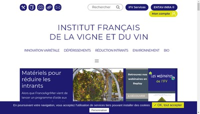 Site internet de Ifv Services