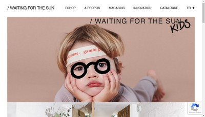 Site internet de Waiting For The Sun