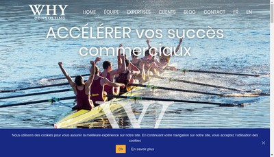 Site internet de Why Consulting