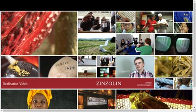Site internet de Zinzolin