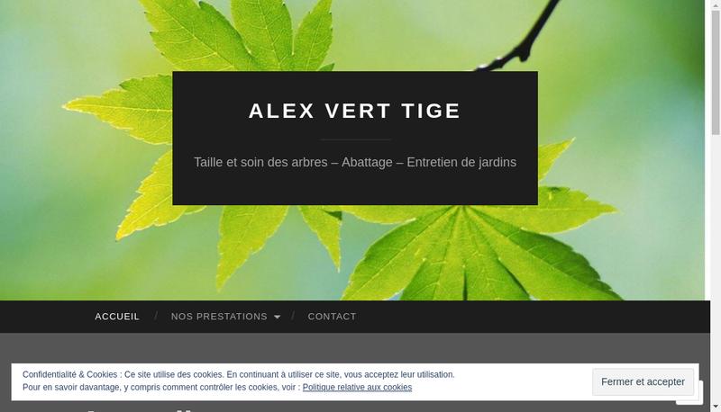 Capture d'écran du site de Alex Vert Tige